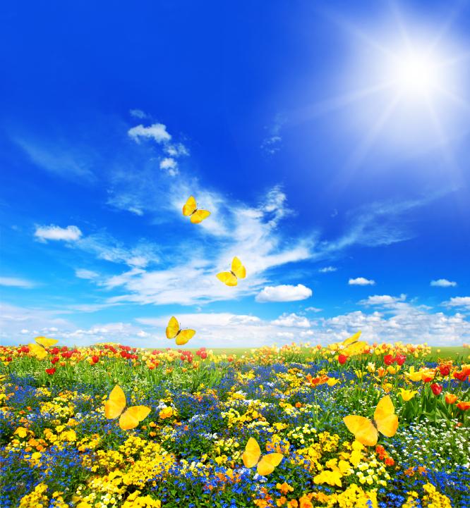 Spring Kaleidoscope Colors